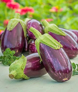Top 9 Benefits of Eggplant For Healthy Body - Healthy T1ps
