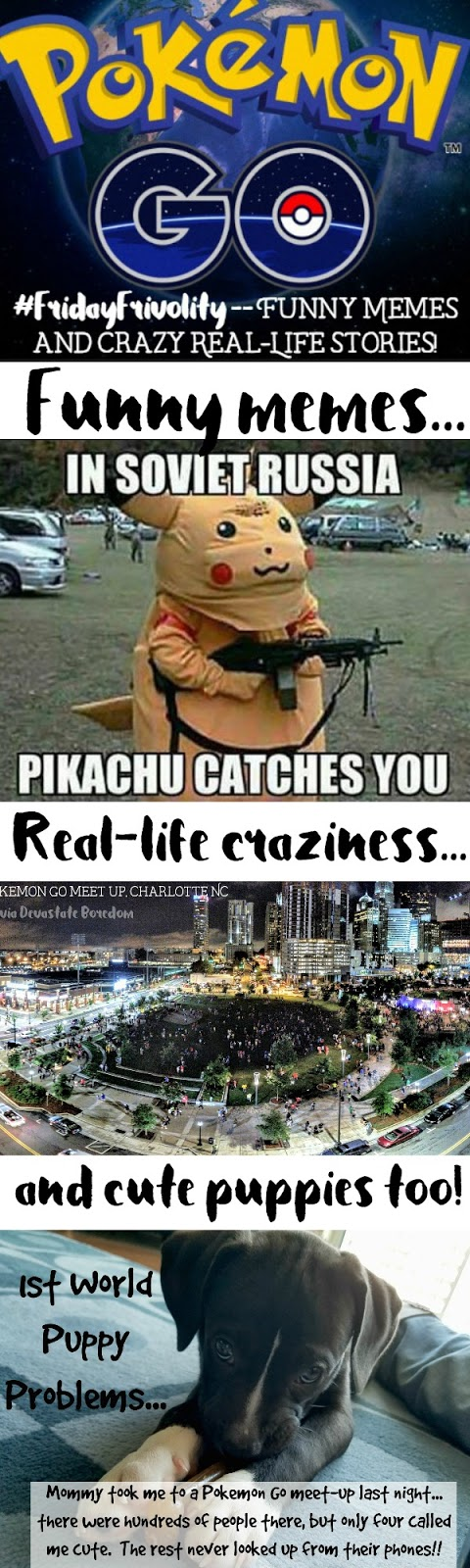 Funny Meme Real Life : Fridayfrivolity pokemon go funny memes my own real