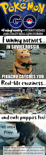 Funny Pokemon Go memes, real-life crazy stories, and a few cute puppies just cuz!  via Devastate Boredom