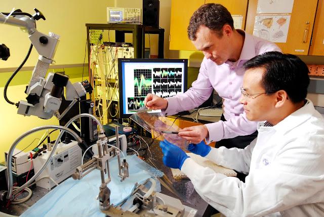 Biyomedikal Mühendisliği Nedir? Ne İş Yapar?