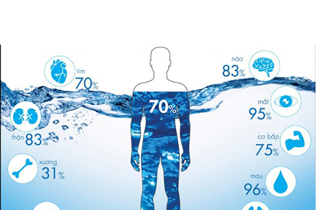 Nước sạch thanh hà cienco 5