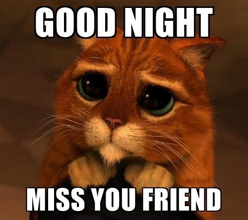 good-night-miss-you-friend
