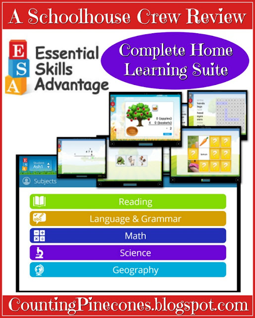Online education, literacy, parenting, mom, children, school, success, math, science, geography