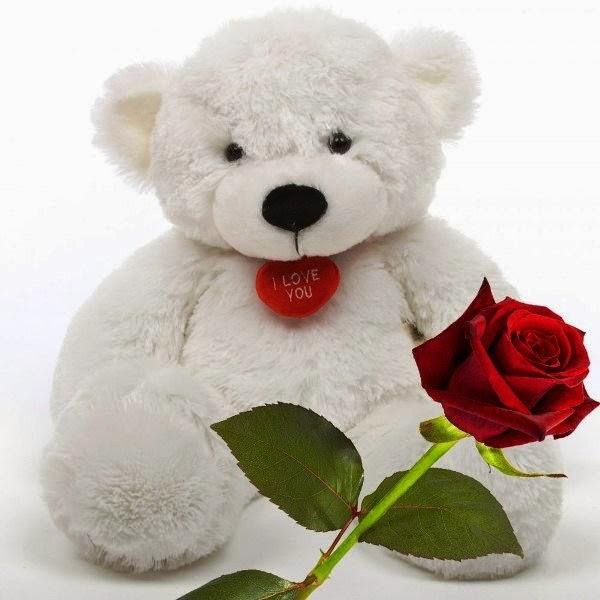 Gratis boneka beruang putih bawa bunga mawar