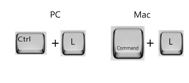 Put cursor in search bar