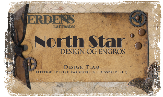 Design Team for North Star Design og Engros