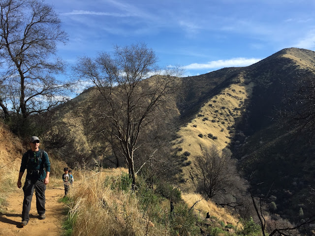 hiking Stebbins Cold Canyon