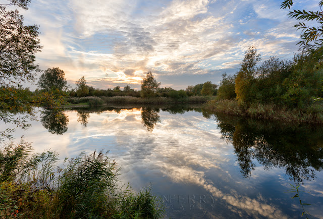 Quiet evening reflection in the RSPB Nature Reserve of Ouse Fens