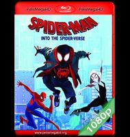 SPIDER-MAN: UN NUEVO UNIVERSO (2018) FULL 1080P HD MKV ESPAÑOL LATINO