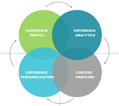 experience management lifecycle