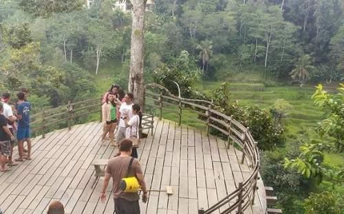 Objek Wisata Bali Pulina Agrowisata Di Kabupaten Gianyar
