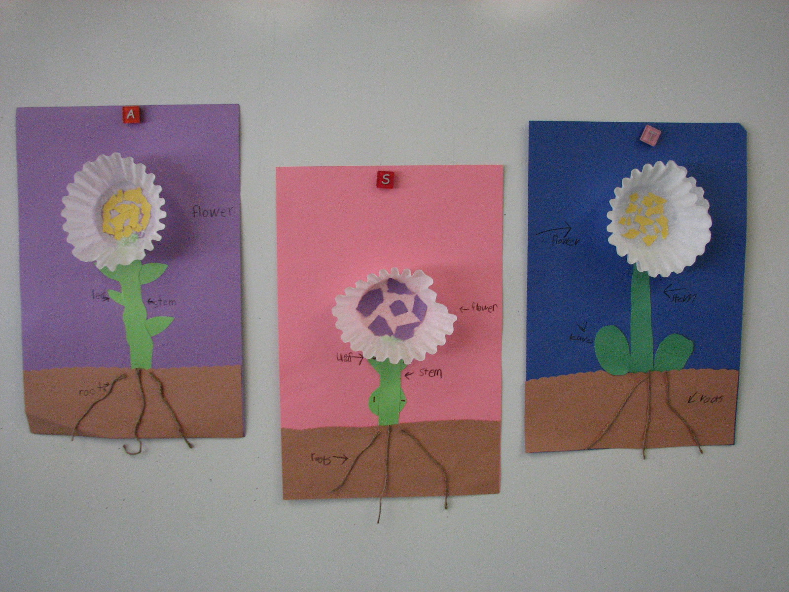 plants activities for kids