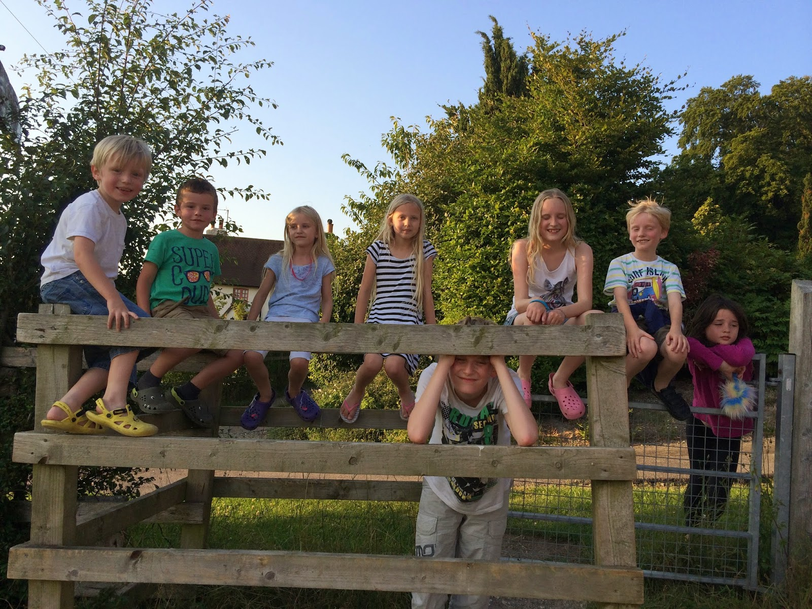 children on gate in rural england