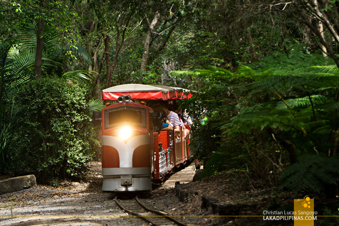 Currumbin Wildife Sanctuary Train Australia