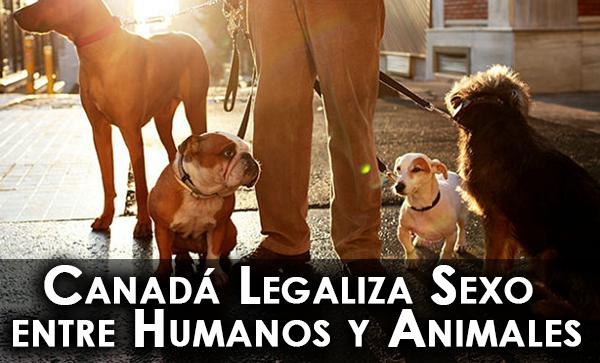 Canadá Legaliza Sexo entre Humanos y Animales