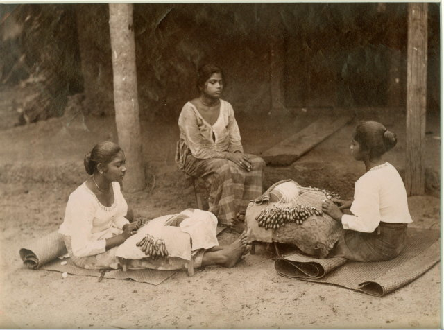 Lace Makers - Ceylon (Sri Lanka) c1880
