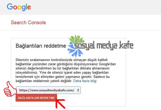 Google Link Reddetme Aracı