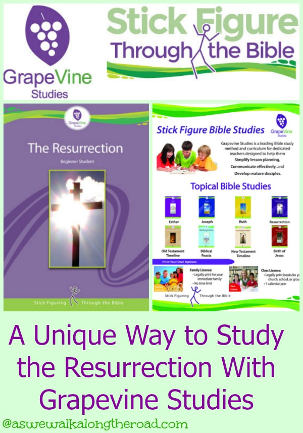 Homeschool Bible curriculum review