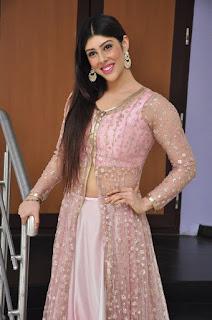 Actress Aditi Singh Latest Stills in Designer Dress at Guppedantha Prema Pressmeet 0023.jpg