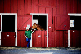 A man standing beside a chestnut horse who is in a bright red barn