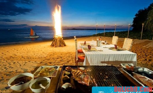 Kinh nghiệm cắm trại ở đảo Cô Tô