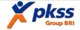PT PKSS
