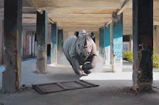 serie-de-pinturas-reflejos-del-medio-ambiente pinturas-animales-arte
