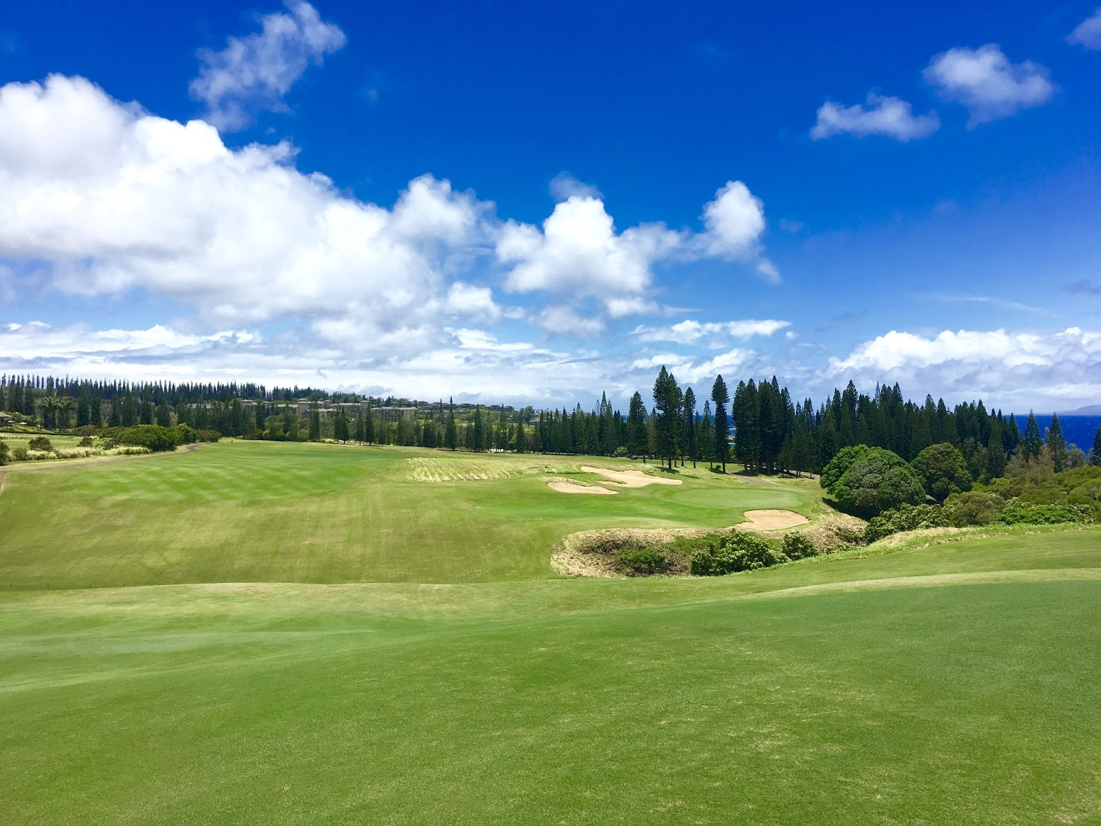 TASTE OF HAWAII: KAPALUA GOLF CLUB - THE PLANTATION COURSE