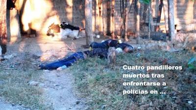 Pandilleros muertos en enfrentamientos con la PNC