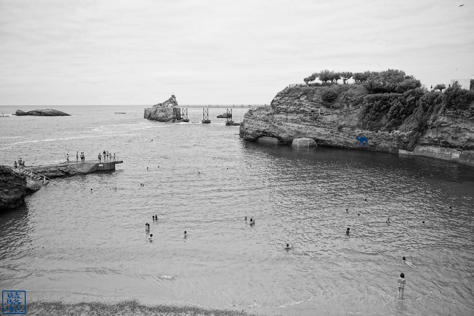 Le Chameau Bleu - La Plage du Port-Vieux - Biarritz Sud Ouest
