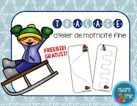 https://www.teacherspayteachers.com/Product/FRENCH-Winter-Tracing-mats-FREE-Fiches-de-tracage-hiver-Gratuit-2939826?aref=rzpfzo1u