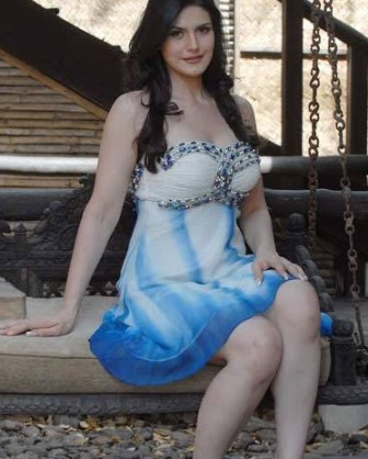 Zarine khan sexy picture