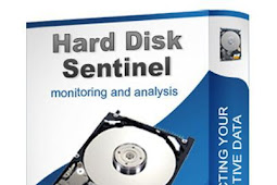 Hard Disk Sentinel Pro 4.60.10 Build 7377 + Patch