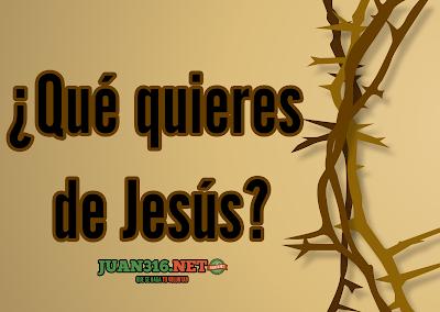 ¿Qué quieres de Jesús? | Reflexiones