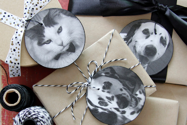 Button to explore all dog DIY and crafts on Dalmatian DIY