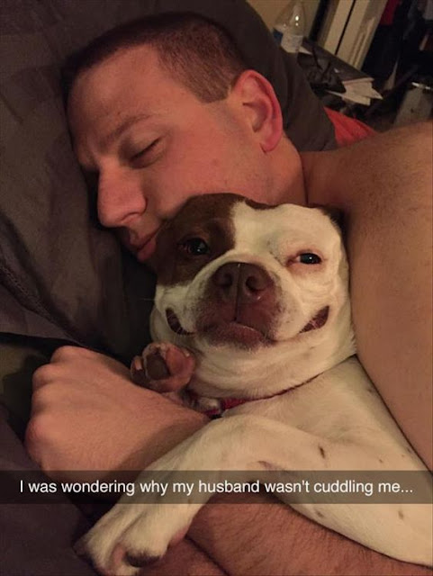 Funny My Husband's True Love Meme