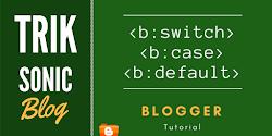b:switch - b:case - b:default - Blogger Tutorial