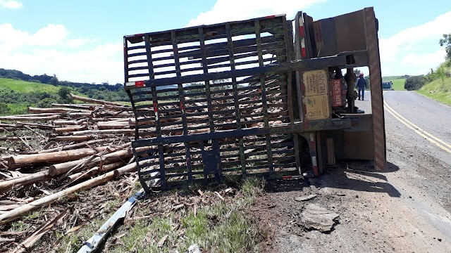 Caminhão carregado de toras tomba em Rio Branco do Ivaí