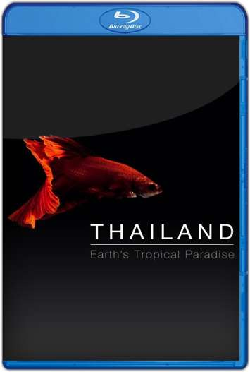 Tailandia Salvaje (2017) HD 1080p Castellano