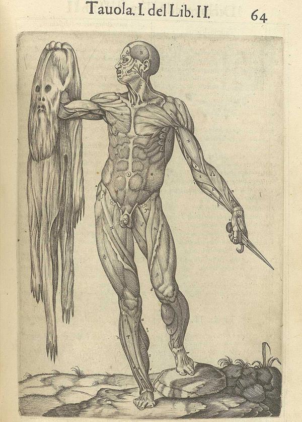 Morbid Anatomy: The Art and Anatomy of St. Bartholomew: Guest Post ...