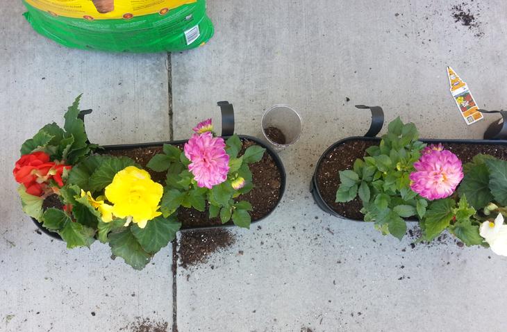 nic nacks: A plant-potting tip