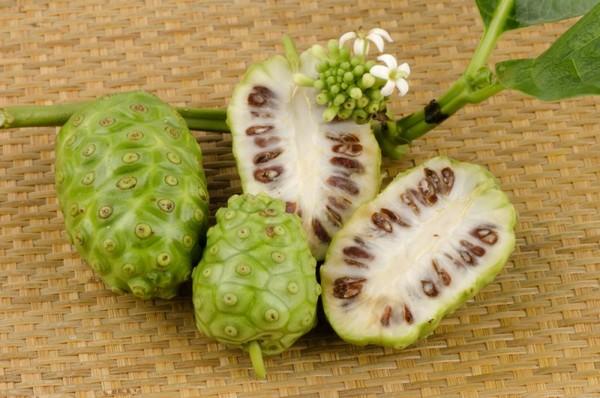 Плод моринды из которого готовят сок нони