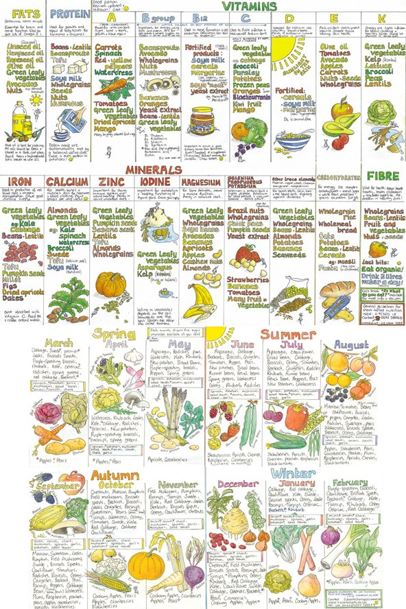 Taken from vogue uk wellbeing also meat free monday liz cook   nutrition charts the conscience rh theconsciencecollectivespot