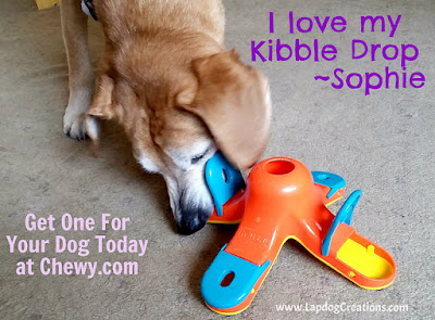 Sophie LOVES her #OutwardHound #KibbleDrop brain game! Available from our friends at #Chewy - #LapdogCreations #seniordog #houndmix #dogplaytime #rescueddog
