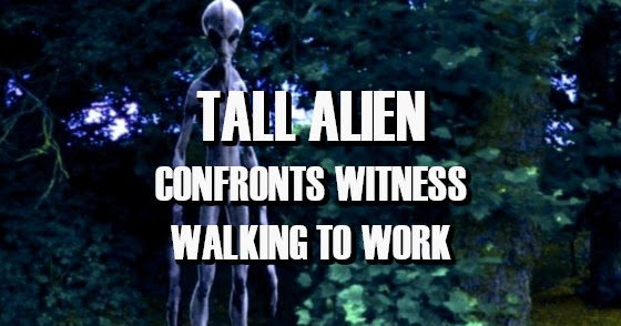 Tall Alien Confronts Witness Walking to Work