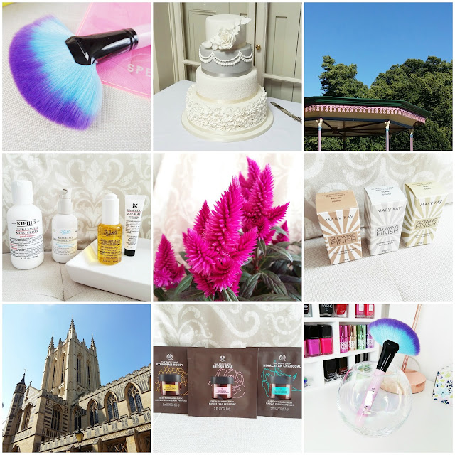 Instagram round-up August 2016
