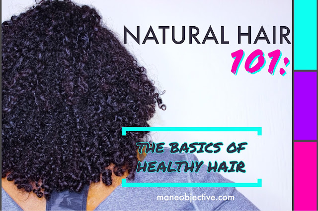 Natural Hair 101 The Basics of Healthy Hair