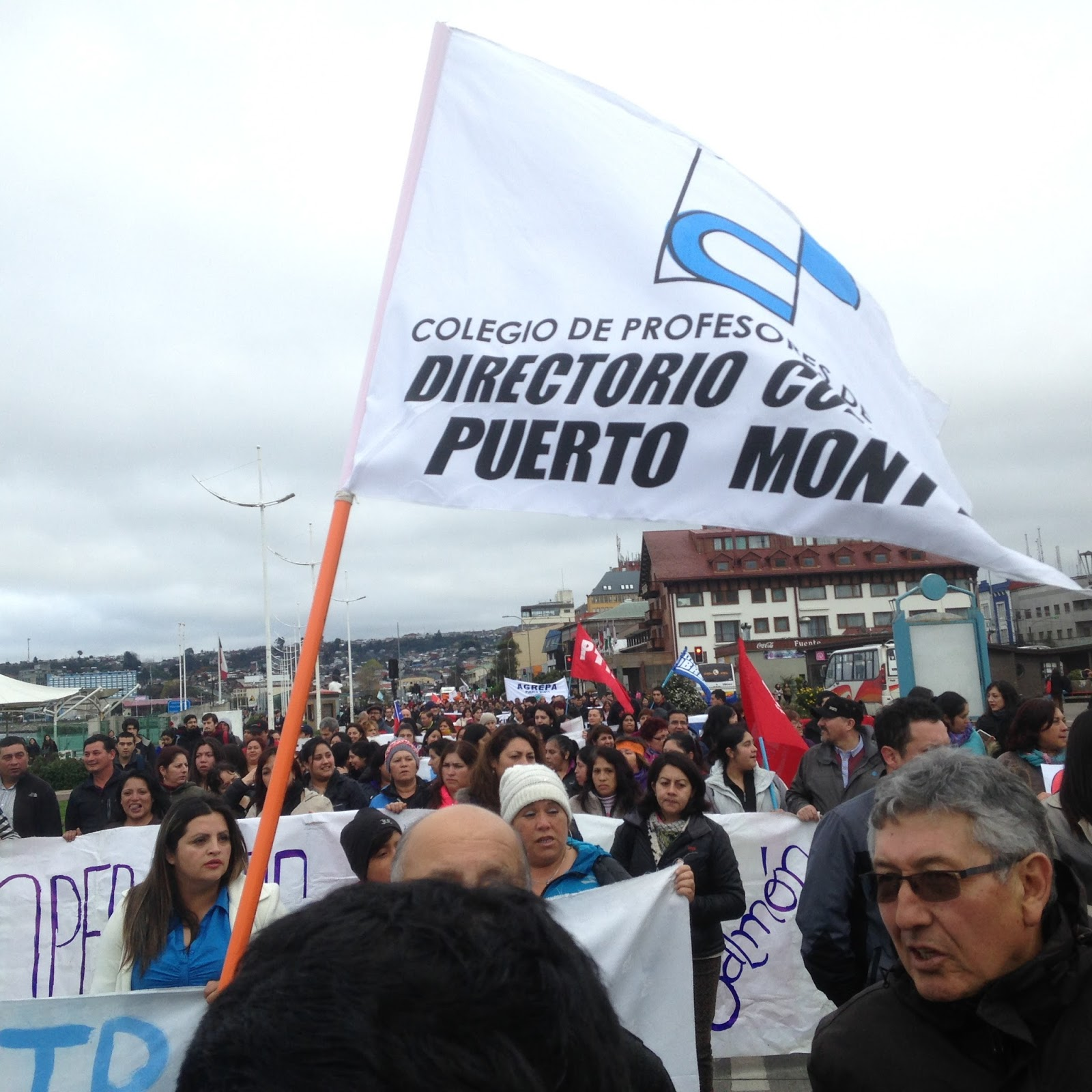 Masiva marcha en Puerto Montt para exigir reforma Previsional y una nueva constitución