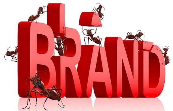 Chiến lược xây dựng thương hiệu cho công ty mới, in ấn AmyPrint