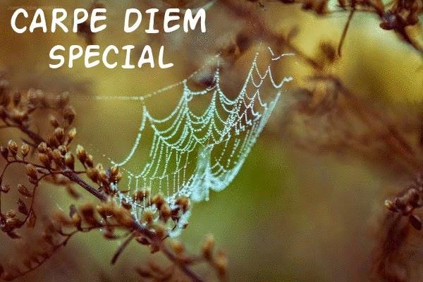 CARPE DIEM HAIKU KAI: Carpe Diem Special #169 Autumn's colors